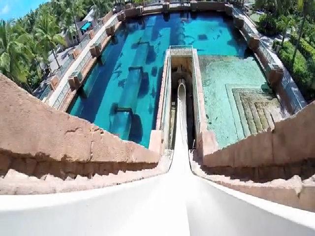 Leap of Faith, khu nghỉ dưỡng Atlantis Paradise Island, Bahamas