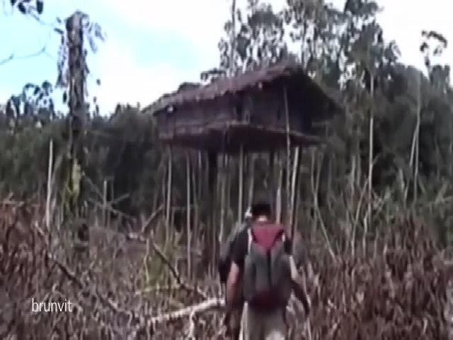 Nhà cây của thổ dân Korowai