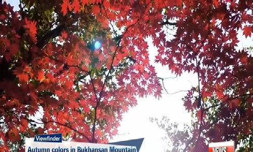 Lịch đón mùa lá đỏ ở công viên quốc gia Hàn Quốc