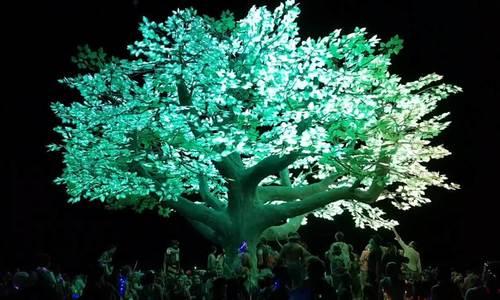 Kết cục của cái cây cô độc nhất hành tinh