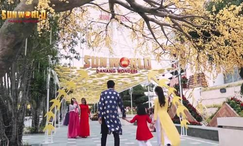 Lễ hội mai vàng cho người Đà Nẵng 'sống ảo' ngày Tết