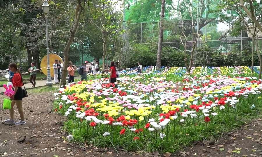 Vườn hoa trong sở thú Sài Gòn bị giẫm nát ngày đầu năm mới