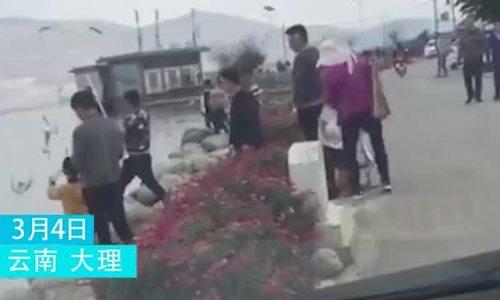Kết đắng của khách Trung Quốc nghe lời trẻ con đánh chim