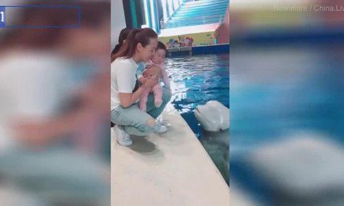 Nụ hôn khiến bé gái Trung Quốc khóc thét ở thủy cung