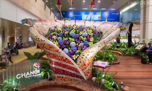 Lý do sân bay Changi đứng số 1 thế giới