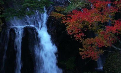 Mùa lá đỏ ở Nikko năm 2017
