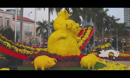 Du khách thích thú với đường hoa xuân tại Đà Nẵng
