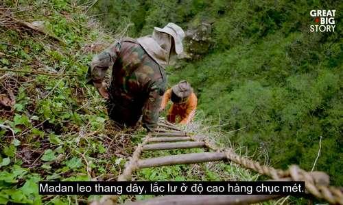 Treo mình trên vách núi săn mật ong ở Nepal
