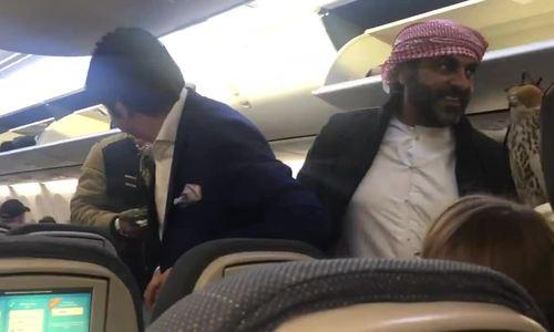 Hành khách Ả Rập gây tranh cãi mang chim ưng lên máy bay