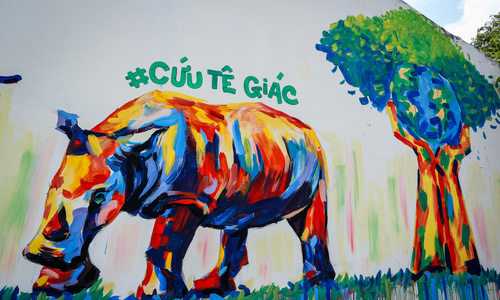 Saigon loves rhinos: Saving endangered animals, one graffiti at a time