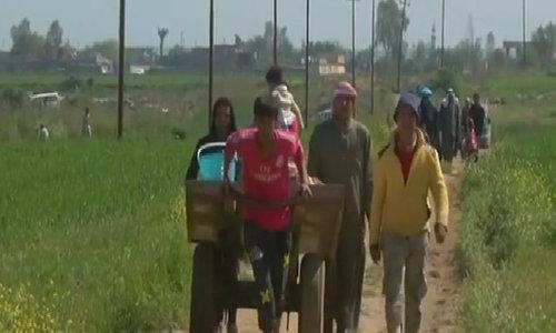 Bodies suggest extrajudicial killings in Iraq