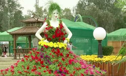 Flowers in full bloom at Baghdad festival