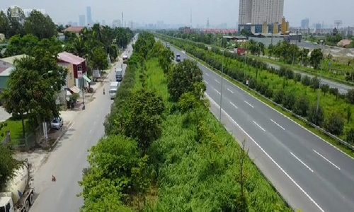 How the green, grassy median strips in Hanoi became a divisive political saga