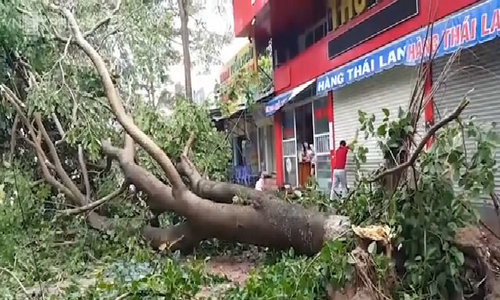 Talas storm takes toll in central Vietnam