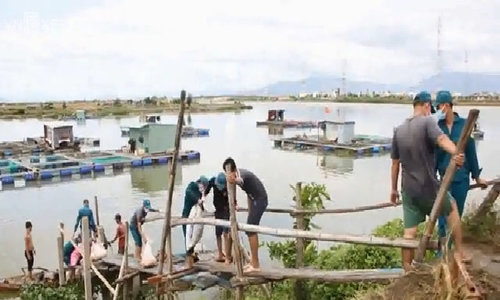 Farmers cry as mass fish deaths hit river in central Vietnam