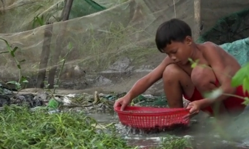 Vietnamese kids denied childhood in scramble to support families