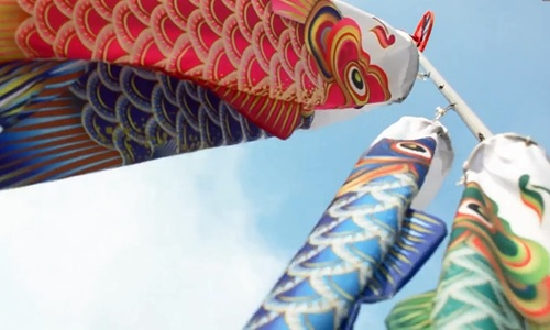Flying fish: Saigoneers lose themselves in a cloud of colorful koinobori