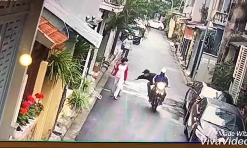 Video shows Hanoi woman toppled as her dog snatched in broad daylight
