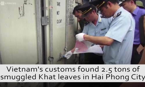 Customs seize 2.5 tons of weed smuggled into Vietnam from Africa