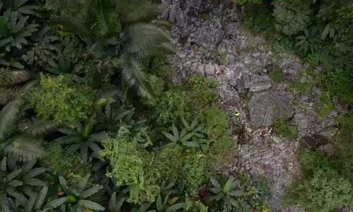 Dense Vietnam forest hides a natural gem