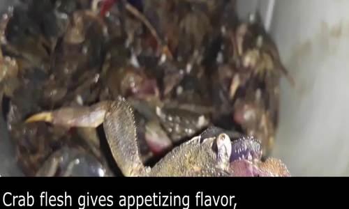 Sesarmid crab