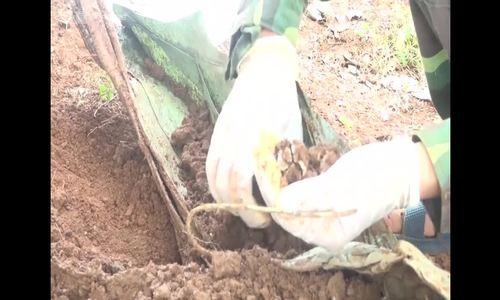 14 Vietnam War martyrs' remains found in central Vietnam