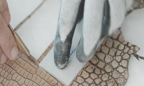 Cận cảnh quy trình tạo ra một chiếc túi Bottega Veneta thủ công