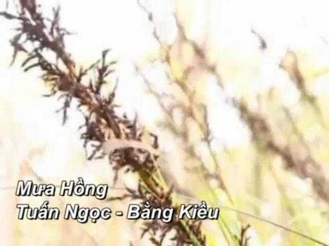 Nhan sắc người tình từng được Trịnh Công Sơn viết 300 bức thư
