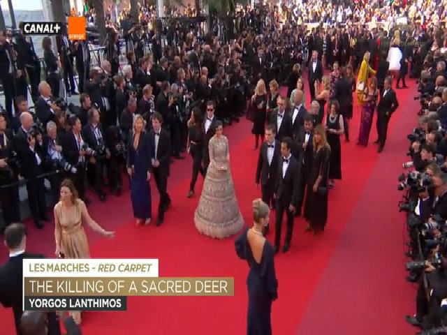 Lý Nhã Kỳ tạo dáng trên thảm đỏ Cannes ngày thứ sáu