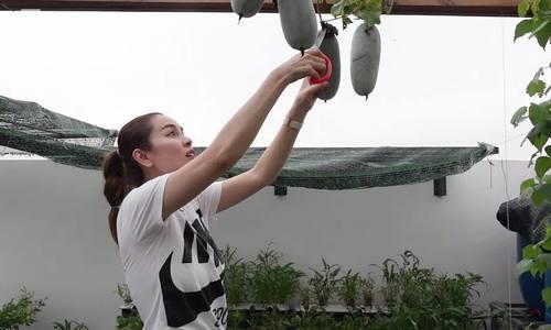 Hoa hau Phuong Le trong rau nuoi ga vit o biet thu nghin met vuong