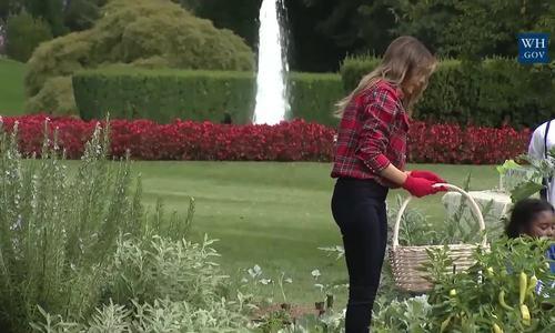 Melania Trump làm vườn cùng trẻ em