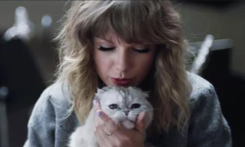 Taylor Swift - nữ ca sĩ cuồng mèo - ảnh 3