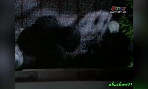 Cao Thanh Lâm - phim