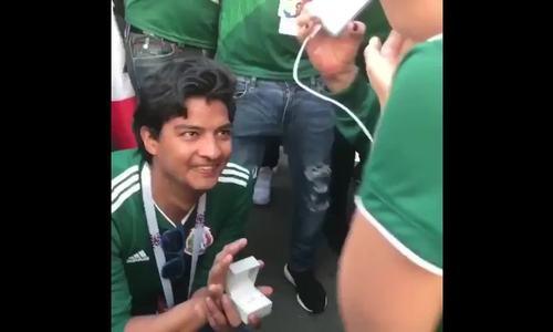 CĐV Mexico quỳ gối cầu hôn thành công bạn gái nhờ đội nhà