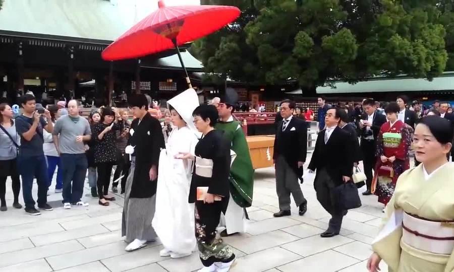 Đám cưới truyền thống ở đền Meiji Jingu, Nhật Bản