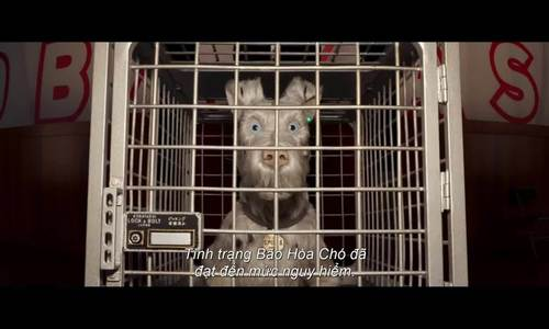 Trailer phim 'Isle Of Dogs'