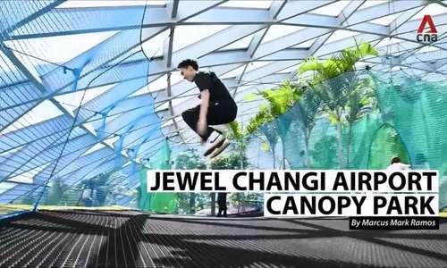 Chơi mãi không hết ngày ở công viên trong sân bay Singapore