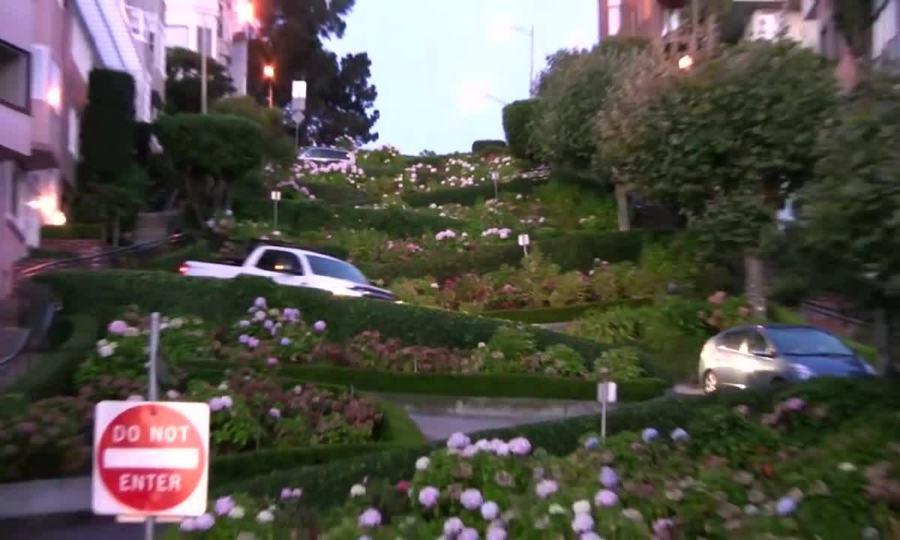 Đường như vườn hoa ở Mỹ