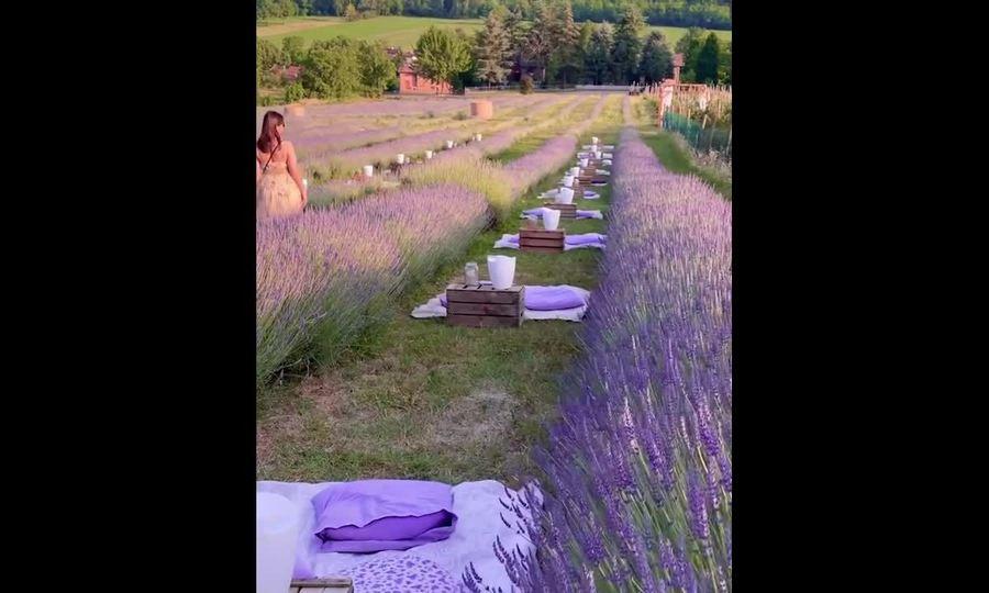 Ăn tối giữa đồng hoa oải hương ở Italy