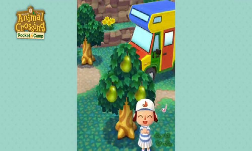 Animal Crossing: Pocket