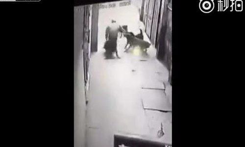 Người đàn ông bị bốn con chó tấn công