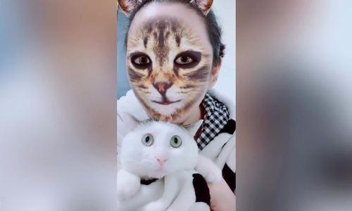 Bộ lọc mặt mèo Tik Tok