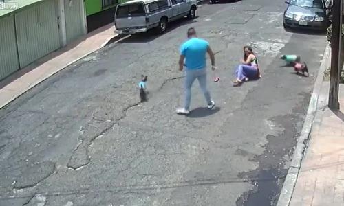 Video 'đánh người vì chó cắn nhau' gây phẫn nộ tuần qua