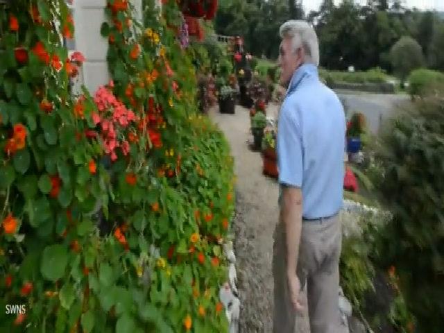 Ngôi nhà rực sắc hoa của người đàn ông 75 tuổi