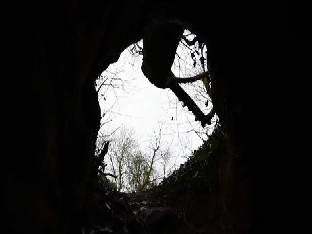 Đền thờ hiệp sĩ Thập tự chinh thế kỷ 14 xuất hiện dưới hang thỏ