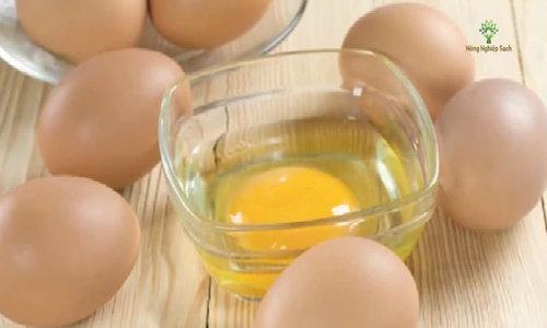 Mẹo nhận biết trứng gà ác và trứng gà Ai Cập