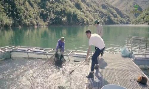 Những mô hình nuôi cá sạch giúp nông dân đổi đời