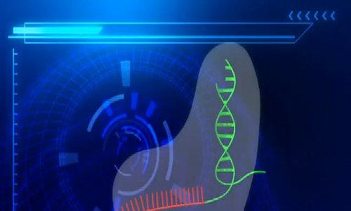 Công nghệ cho phép chỉnh sửa gene của mọi sinh vật sống