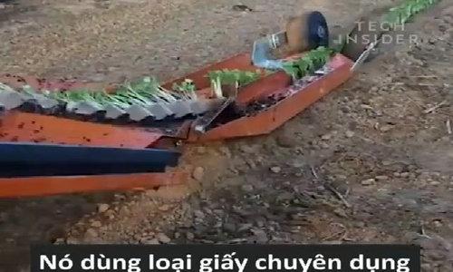 Chiếc máy 24 triệu đồng trồng cả vườn rau trong vài phút