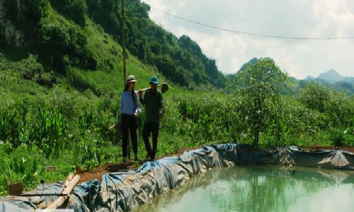 Nông dân chế hệ thống tưới nước cho đồi na